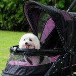 Pet Gear Nv Pet Stroller Front canopy open