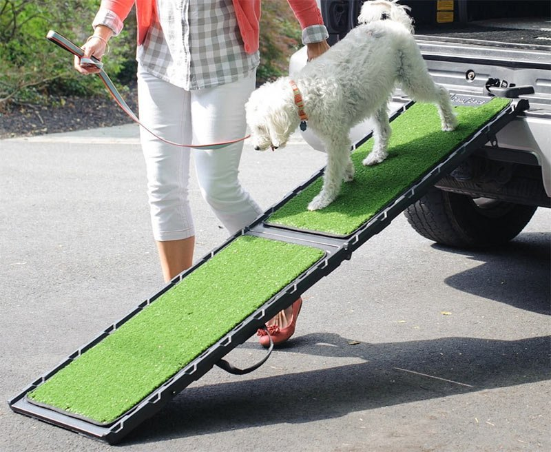 Pet Ramp For Car >> Dog Ramp For Car Suv And Truck Reviews And In Depth Buyer Guide
