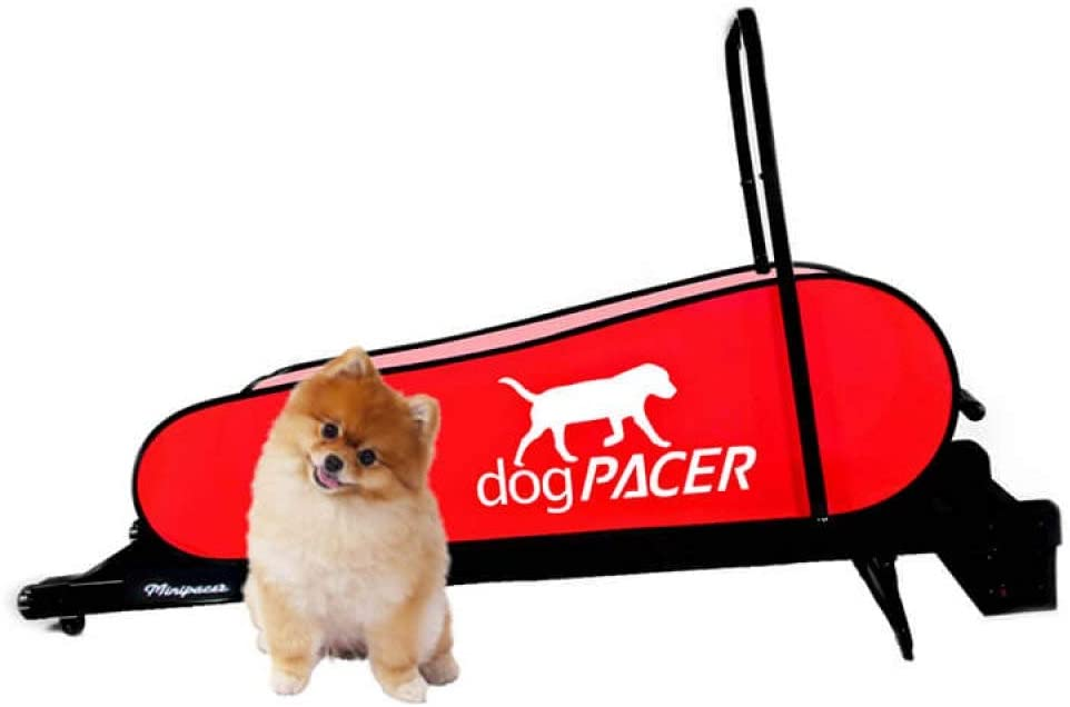 dogPACER Minipacer
