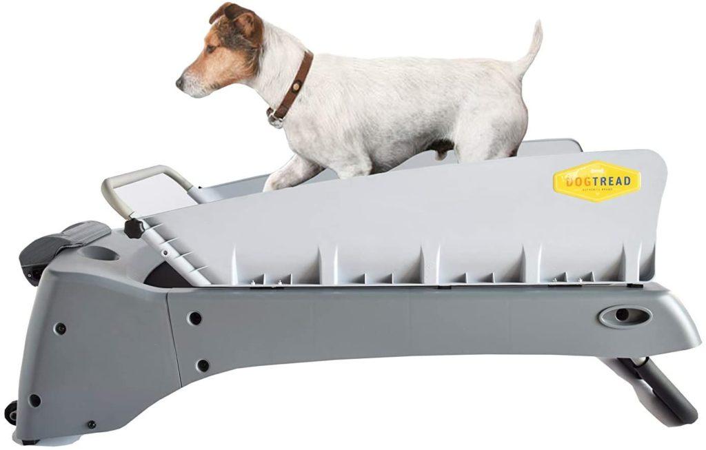 DogTread Premium Treadmill
